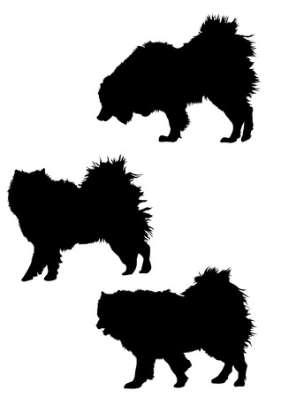 Big dog silhouette on a white background Vector