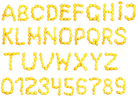 Letters and numbers alphabet of fresh lemon photo