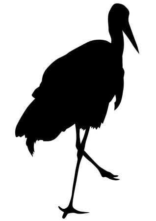 heron: Most wild heron on a white background Illustration