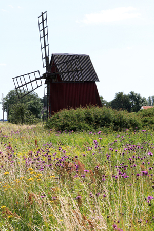 Old wooden windmill in the trees