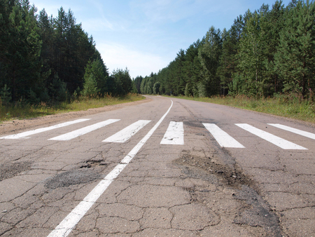 Marking road over forest at countryside Banco de Imagens
