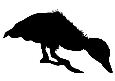 Duck in nature on a silhouette black and white background illustration.