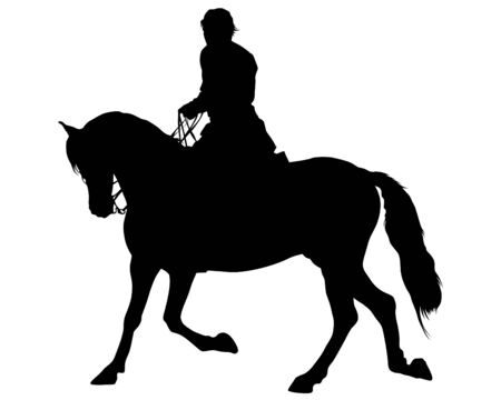 Horseman rides horse on a white background