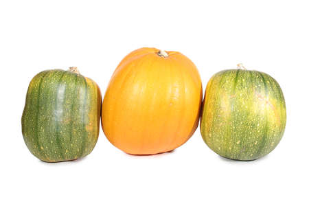 Large pumpkin on a white background. Isolated object