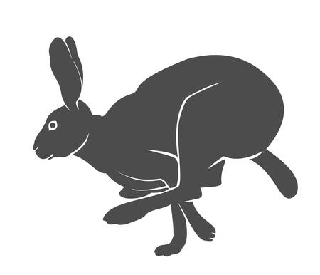bunnies: Silhouette of the running hare Illustration