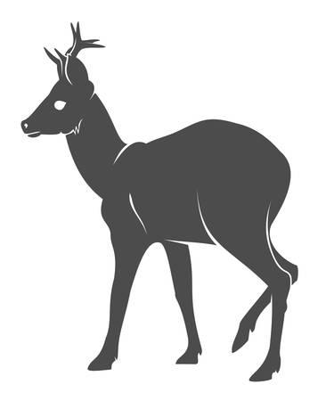 roe deer: Silhouette of the deer confronting