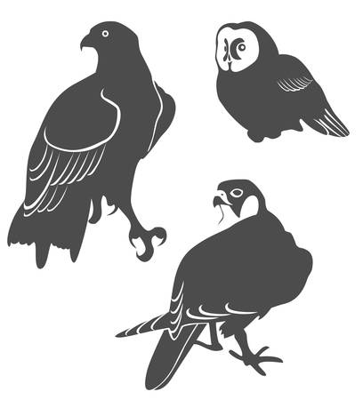 Silhouettes of the predatory birds Vector