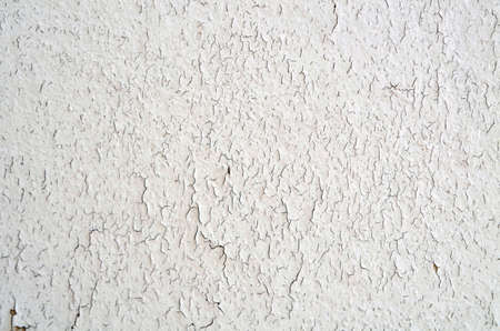 Surface of the old wall covered with cracked white paint. Cracks all over the surface