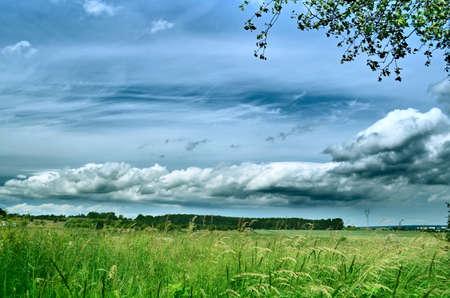Landscape. Nature. Green grass on the field. Blue sky. Gray clouds Standard-Bild