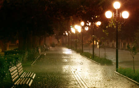 Night park lit by lanterns. Wet benches and paving stones after rain