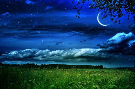 Night landscape with green fields on hills and moon, stars in sky over farmland