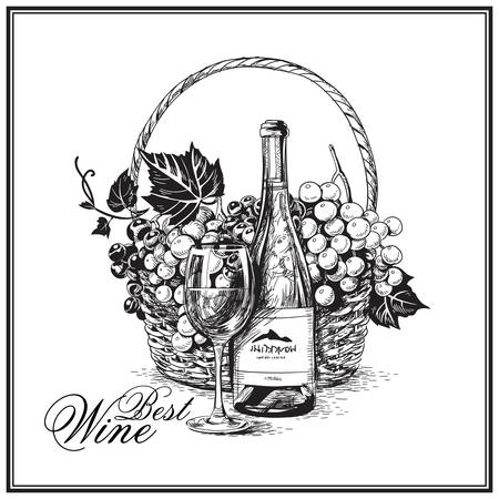 Wine bottle with wineglass and wicker basket with bunch of grapes in hand-drawn style vector illustration.