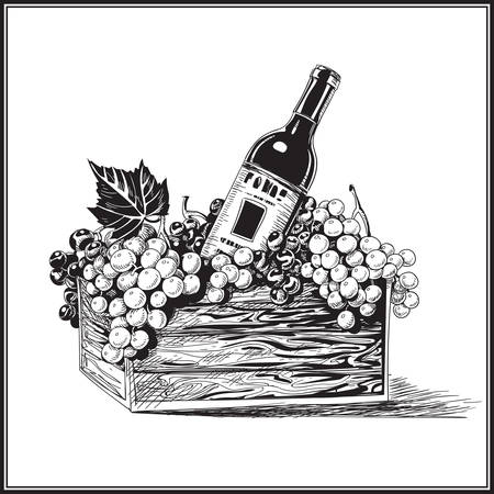 Wine bottle in wood basket with bunch of grapes in hand-drawn style vector illustration. Illustration