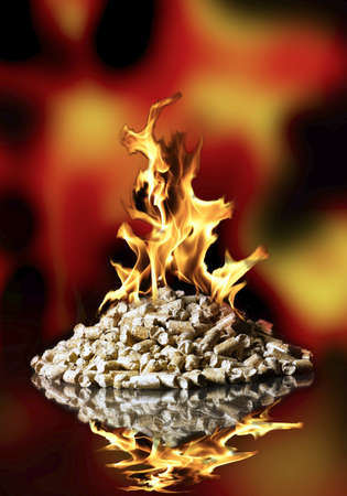 wood pellet: ecological fuel pellets