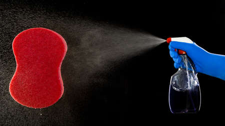 Pump sprayer and the lemon and sponge for washing Stock Photo