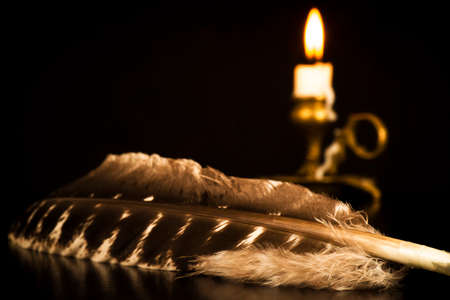 Bird's feather with a candlestick and a lit candle on a dark background
