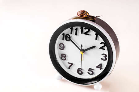 Time lapse concept - snail and clock on white background