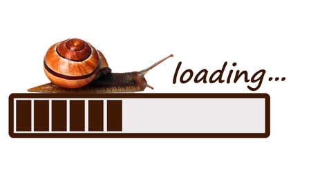 Slow brown progress bar with snail. Illustration on white background.