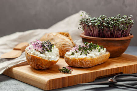 Sandwiches with cottage cheese and red cabbage sprouts on a chopping board