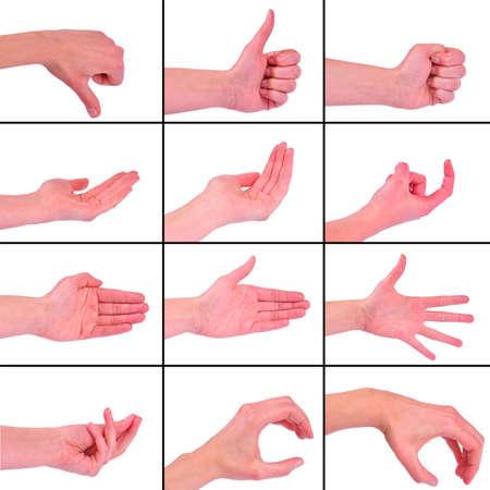 Twelve different hands gestures isolated