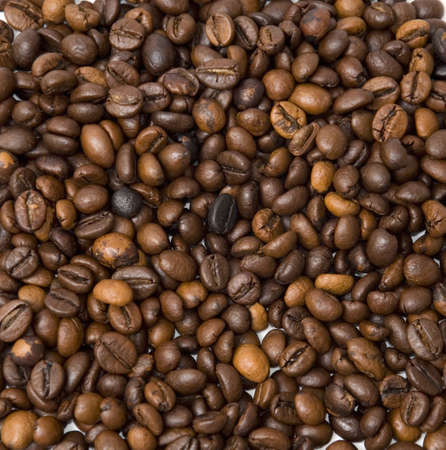 Background made of coffee beans photo