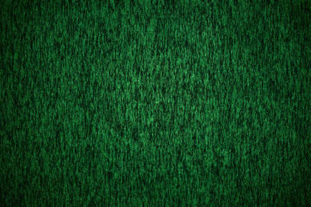 Dark green texture - background photo