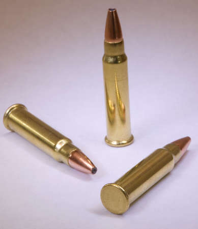 projectile: bullets and cartridges ready for the hunting season