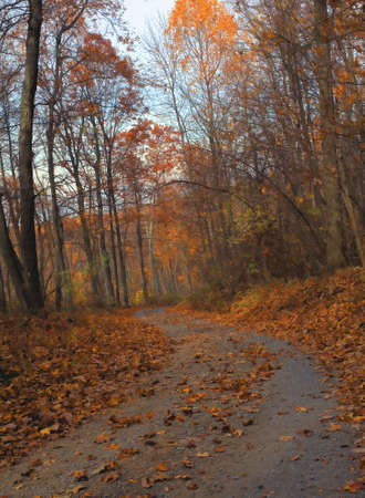 an autumn back road to grandpas house in Virginia photo