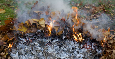smoldering: flames lighting up around a pile of fall leaves being burned