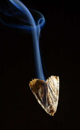 strobist: Moth that is pouring out smoke as it plummets down Stock Photo