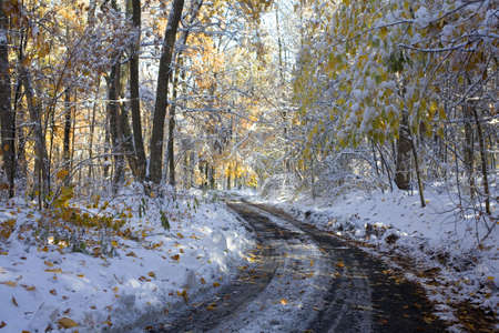 mud and snow: Twisting dirt road that has received an early fall snow Stock Photo