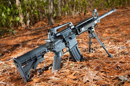 Semi automatic black rifle on a pine needle and forest background