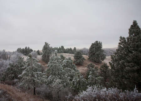 come in: Snow just staring to come down in Wyoming