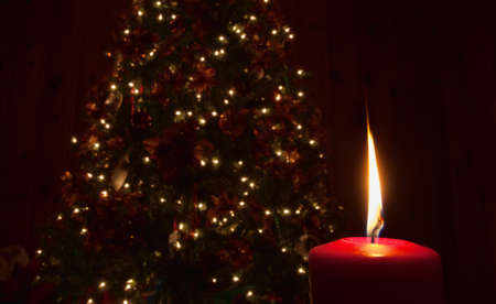 Single candle that is lit in front of a Christmas tree photo