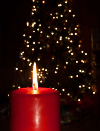 shined: Christmas tree behind being out shined by a red candle