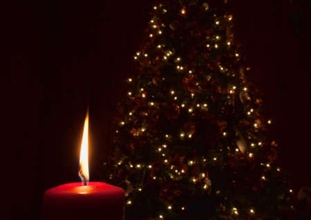 Red candle lit in front of a Christmas tree photo