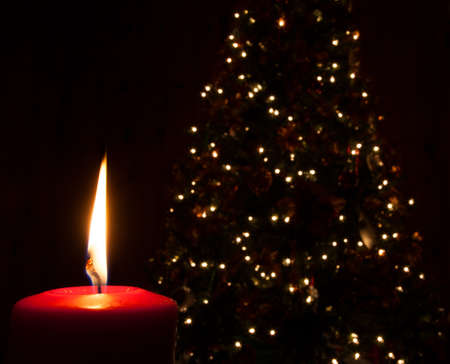 seem: Christmas tree lights seem dim with a red candle in the foreground