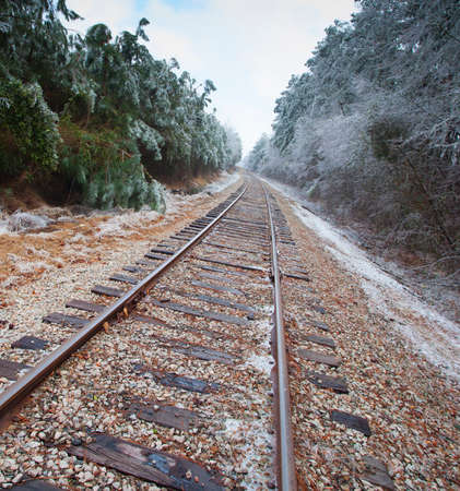 forest railroad: Old railroad tracks going through a forest with ice