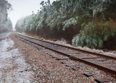 black and white railroad tracks: Old tracks for a railroad going through an iced forest