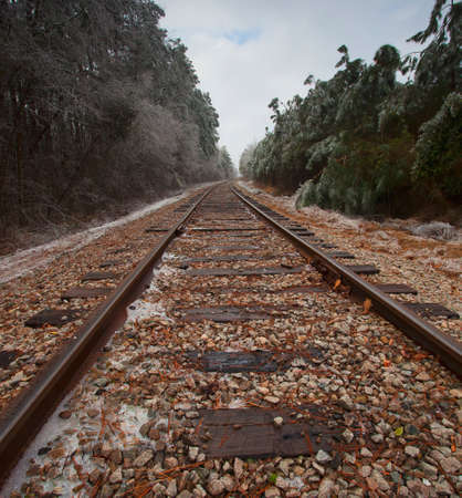 forest railroad: Railroad tracks doing through a forest with ice