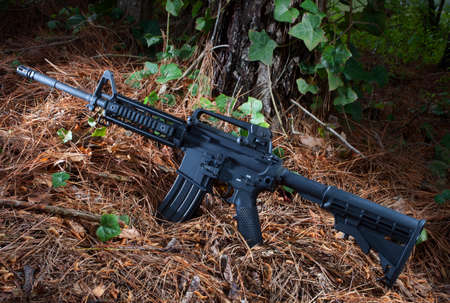 pine needles: Assault rifle on pine needles with ivy and trees around