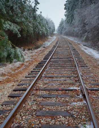 forest railroad: Old railroad tracks going through a forest covered in ice