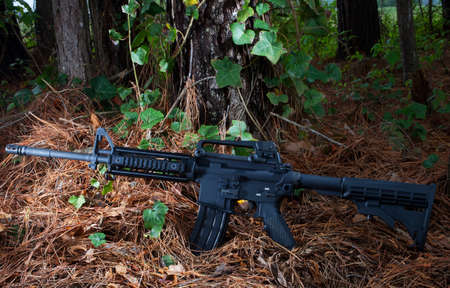 pine needles: Assault rifle on a bed of pine needles in a dark forest