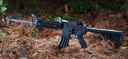 needles pine: Assault rifle on pine needles in a dark forest Archivio Fotografico