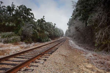 black and white railroad tracks: Railroad tracks winding through a forest just after an ice storm Stock Photo
