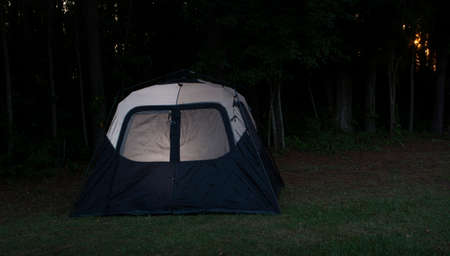black: Tent with a light on as the last fingers of light filter through the trees
