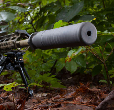 the silencer: Silencer on a rifle that is in a bunch of trees