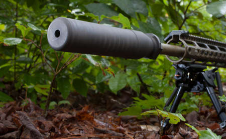 the silencer: Modern sporting rifle with a silencer in the bushes Stock Photo