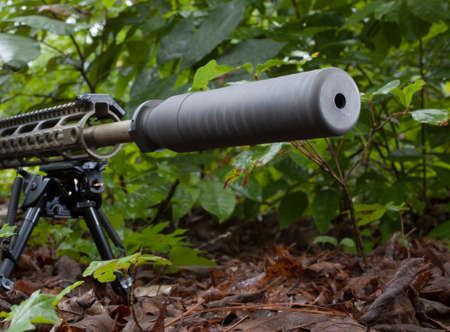 silencer: Silencer and rifle in a thick bunch of foliage