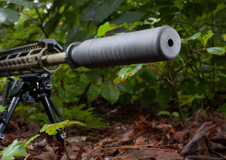suppressor: Modern sporting rifle with a suppressor in the bushes